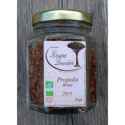 Organic raw chewable Propolis - jar 30g