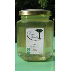 Organic Rosemary honey - 2014 harvest - jar 250g