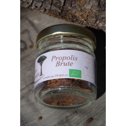 Organic raw chewable propolis - 10g