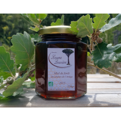Organic Forest honey from Ariège plains - jar 250g