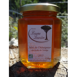 Organic Chestnut honey from Ariège forests - jar 250g
