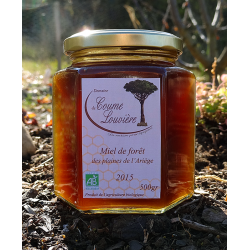 Organic Forest honey from Ariège plains - jar 500g