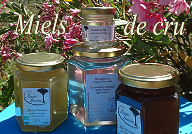 Miels de cru - Honey